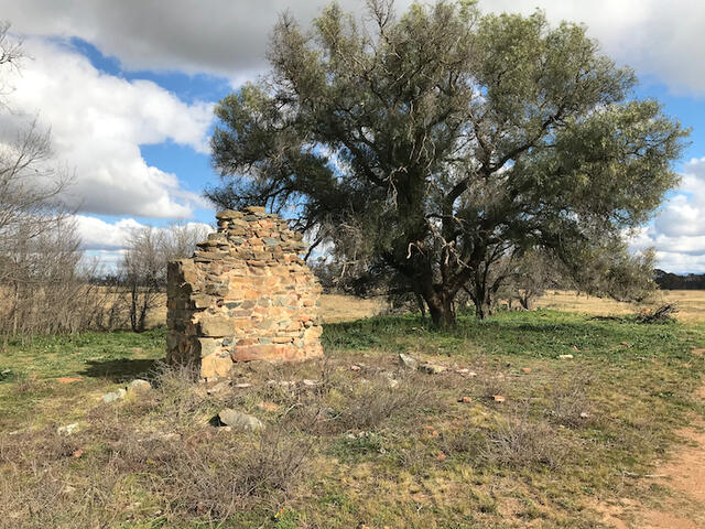 Inglewood chimney ruins and pepper tree